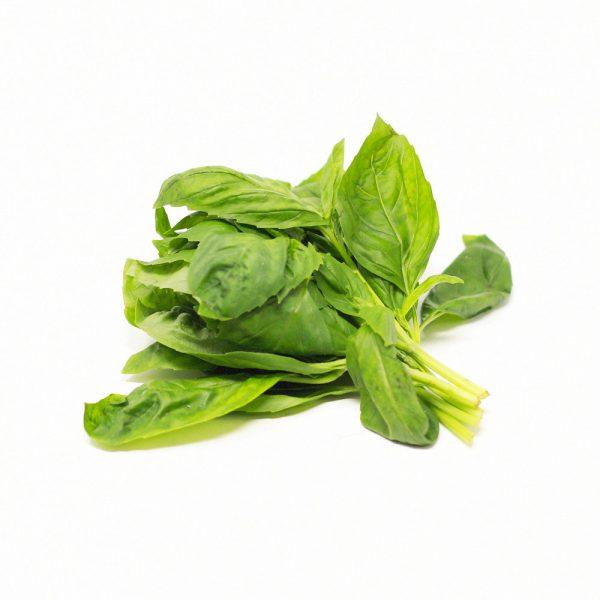 Fresh-Basil