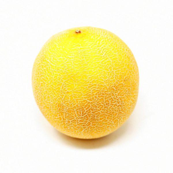Galia-Melon