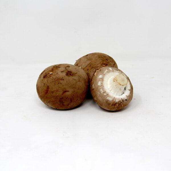 Chestnut-Mushrooms