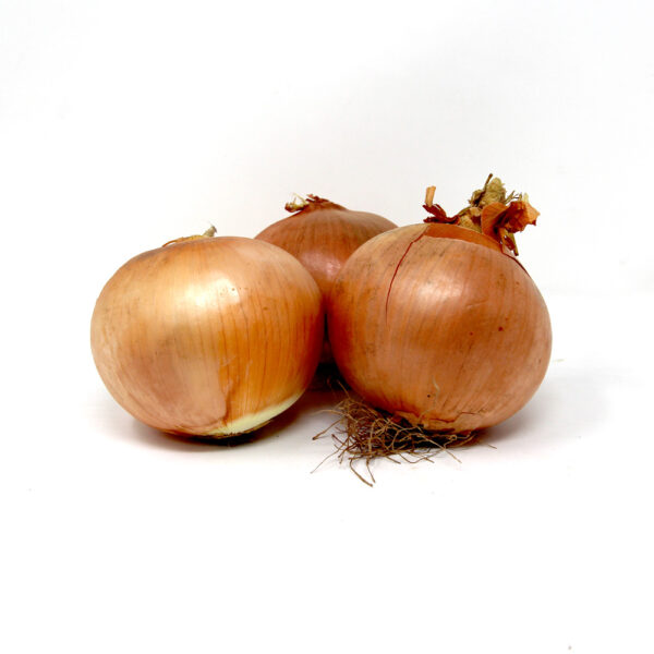 Large-Spanish Onions