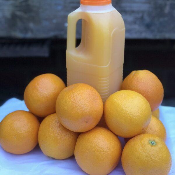 freshly-squeezed-orange-juice