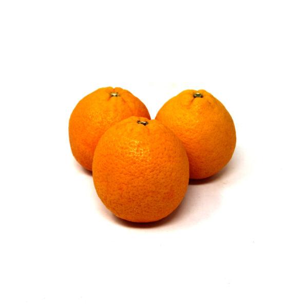 Large-Oranges